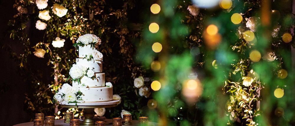Lisa Stoner + Sprinkles Custom Cakes + Root Photography Alfond Inn - 039.jpg